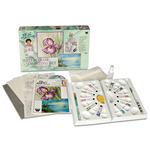 Susan Scheewe Deluxe Watercolor Workshop Set