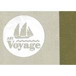 Art Voyager Cases