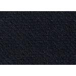"""Canson Mi-Teintes Board 16x20"""" - 425/Black"""