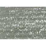 Caran d'Ache Neocolor II Crayons Individual No. 401 - Ash Grey