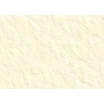 """Revere Printmaking Paper 100-Pack 22x30"""" - Ivory   Felt"""