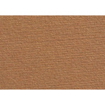 "Fabriano Tiziano 10 Pack 20x26"" - Raw Sienna"