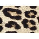 Platypus Designer Duct Tape Roll - Leopard