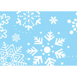 Platypus Designer Duct Tape Roll - Snowflake