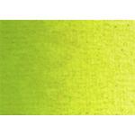 Royal Talens Van Gogh Oil Color 200 ml Tube - Yellowish Green