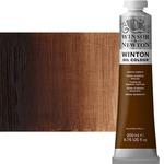 Winton Oil Color 200 ml Tube - Burnt Umber