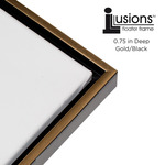 """Illusions Floater Frame for 3/4"""" Canvas 16x20"""" - Gold/Black"""