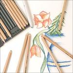 Faber-Castell PITT Pastel Pencils