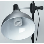 Daylight Clip-On Studio Lamps
