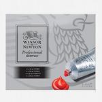 Winsor & Newton Artists' Acrylic Intro Set of 6 20 ml Tubes