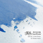 Winsor Newton Professional Watercolor 10 Pack 22x30 300lb Cold Press