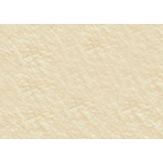 "Arches Cover 250 gram / 10-Pack 22x30"" - Cream"