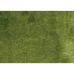 Daler-Rowney F.W. Acrylic Ink 1 oz Bottle - Sap Green