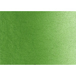 LUKAS Aquarell Studio Watercolor 10 ml Tube - Olive Green