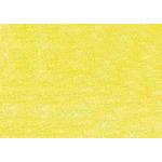 Sennelier Soft Pastels (La Grande) Box of 3 - Apple Green 4