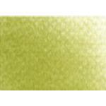 PanPastel  9 ml Compact - Brite Yellow Green Shade