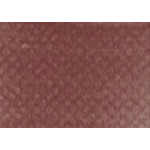 PanPastel  9 ml Compact - Red Iron Oxide Shade