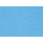 """Canson Mi-Teintes Sheet 19"""" x 25"""" (Pack of 10)"""