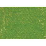 Caran d'Ache Soft Pastel Individual No. 235 - Mid Moss Green