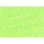 Caran d'Ache Neocolor II Crayons Individual No. 231 - Lime Green