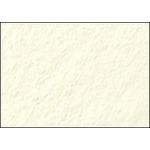"Canson Art Board Canson Edition Board 5-Pack 32x40"" - Vanilla"
