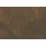 Gamblin FastMatte Alkyd Oil Colors 150 ml Tube - Raw Umber