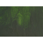 Gamblin FastMatte Alkyd Oil Colors 37 ml Tube - Sap Green