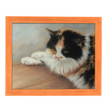 Country Chic Narrow Bourbon Orange Frames - Millbrook Collection