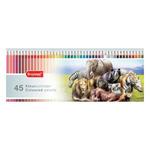 Bruynzeel 45ct Color Pencil Wild Animals Cover Tin Set