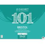 "Daler-Rowney Cachet 101 Bristol Pad 18x24"" Vellum 15 Sheets"