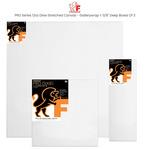 "Fredrix PRO Series 12oz Dixie Stretched Canvas - Gallerywrap 1-3/8"" Deep Boxes of 3"