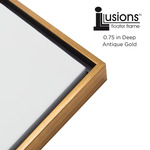 Illusions Frame Antique Gold Top & Sides 3/4in Deep 20X20