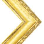 Millbrook Collection: Annapolis Gold Frame 2in 24X30 With Acrylic