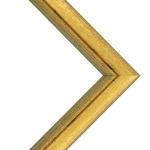 Millbrook Collection: Metallic Aspen Gold Frame 1 3/8in 24X30 W/ Acrylic