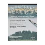 "Paramount 10 Sheet Cotton Canvas Pad 11x14"""