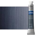 Winsor & Newton Cotman Watercolor 8 ml Tube - Payne's Grey
