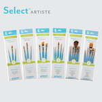 Princeton Select 3750 Brush Value Sets