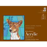 "Strathmore 400 Series Acrylic Pad 18x24"" 10 Sheets"