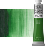 Winton Oil Color 200 ml Tube - Terre Verte