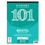 "Daler-Rowney Cachet 101 Bristol Pad 9x12"" Vellum 25 Sheets"