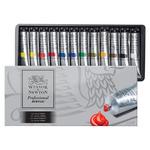 Professional Acrylic Professional Acrylic Assorted Colors 20 ml (Set of 12 )